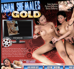 Amazing adult website to get some some fine ladyboy content