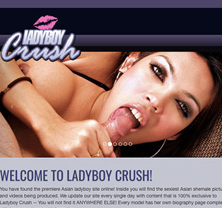 Great adult site to access awesome ladyboy content