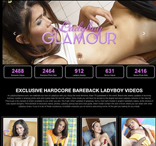 Amazing adult website to have fun with top notch ladyboy HD videos